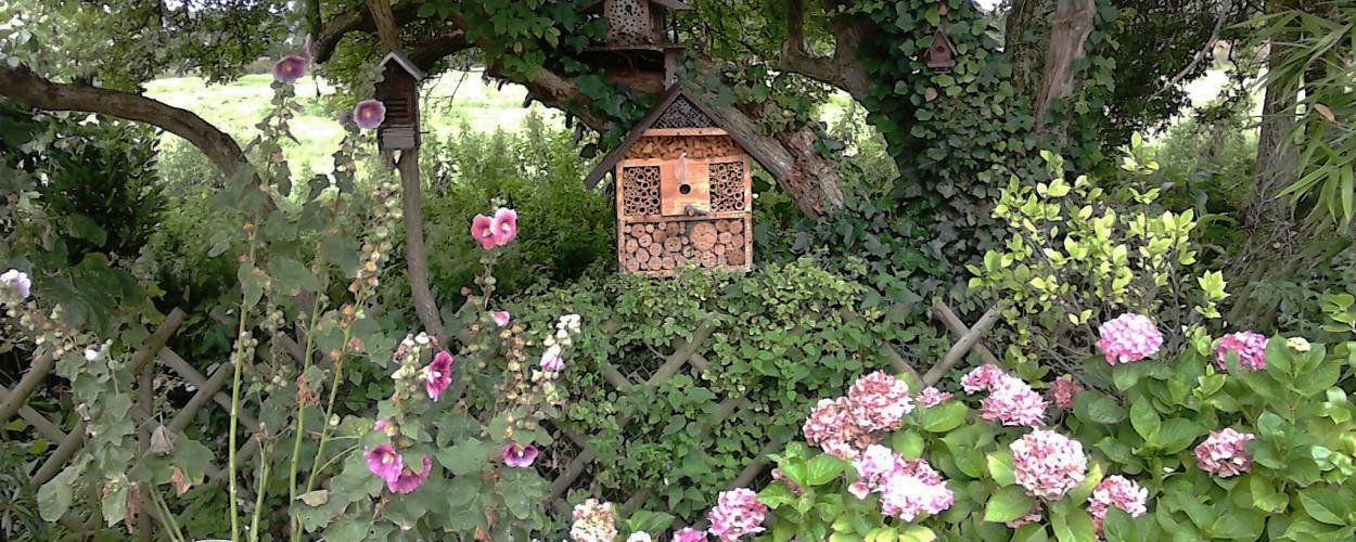bannière header ruche